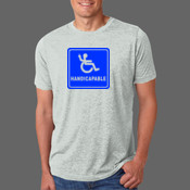 Handicapable